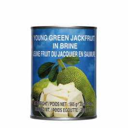 young green jackfruit 565gr